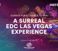 EDC Week Charity Sweepstakes with Unparalleled Artist-Related Experiences