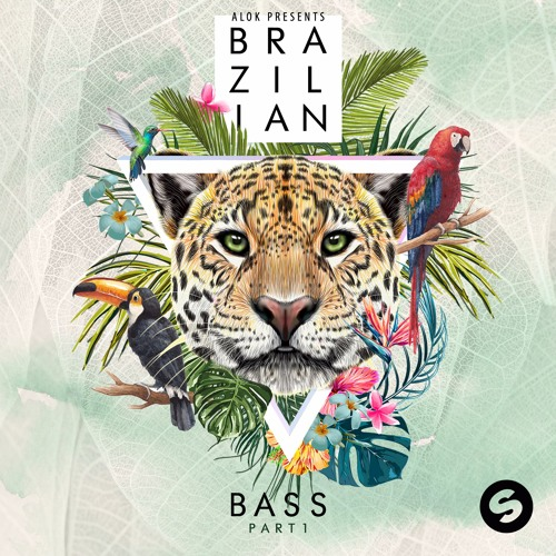 Alok Presents Brazillian Bass Part 1