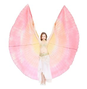 Dance Fairy Colorful Belly Dance Isis Wings