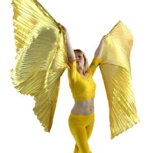Danzcue Gold Hand-held Wings